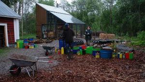 Owe Salmela och Camilla Forsén-Ström planterar växter i färggranna krukor i trädgården på Strömsö.
