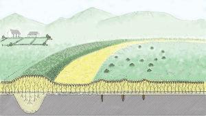 Tecknad beskrivning av en forntida bosättning med befästningsvall efter att den begravts under historiens gång