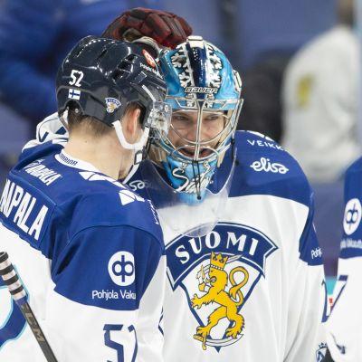 Harri Säteri Suomi Leijonat