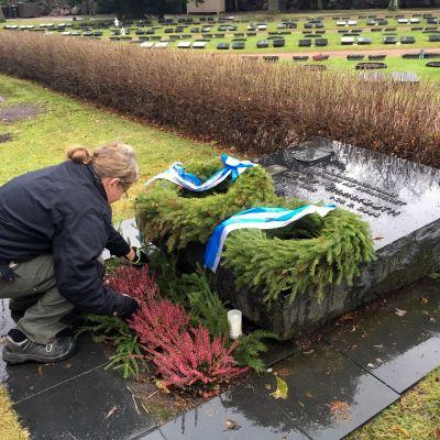 Petteri Sollo laittaa havuja Adolf Ehrnroothin muistokiven viereen