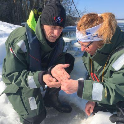 Jouni jaKoskela ja Tiina Leinonen löysivät kuutin karvoja Luonterilta torstaina.