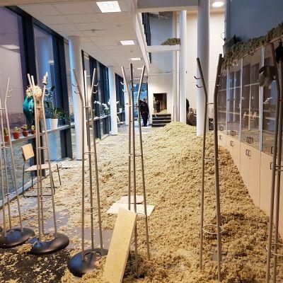 Sisäkatto romahti loviisalaisessa koulussa - rakennuksessa muitakin murheita