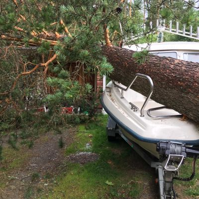 Kuvassa on Päivö-myrskyn tuhoa Joensuun Karsikossa.