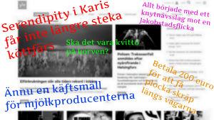 Olika rubriker från Svenska Yles webb.