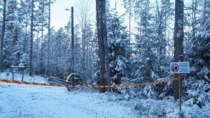 En snöig skog. En maskin avverkar träd. I förgrunden en varningsskylt (tillträde förjudet) och ett randigt plastband.