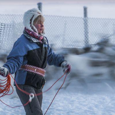 Miten matkailu ja saamelaisten perinteinen porotalous mahtuvat Lappiin?