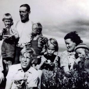 Hely Tuorilan perhe heinäpellolla vuonna 1952.