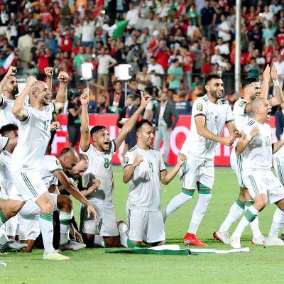 Algeriets herrlandslag i fotboll firar.