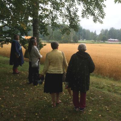 Fem kvinnor som ser ut över en åker