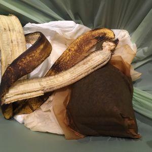 Bioroskiksessa tyypillisimmät tavarat: kahvinsuodatin ja banaaninkuori.