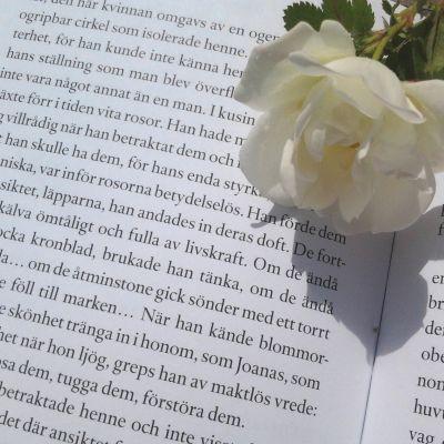 Böcker i bersån 2014