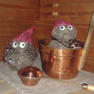 Meidän pikku sauna vieraat pääsi kuvaan.