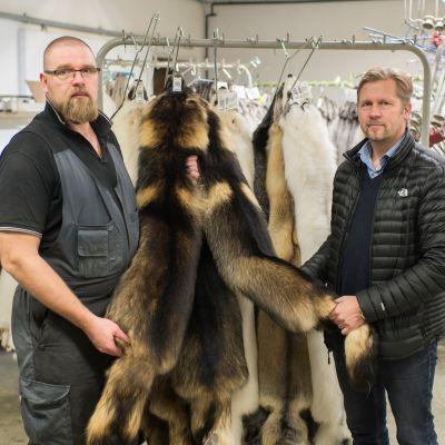 Turkistuottaja Lasse Joensuu Himangalta ja Pohjois-Suomen Turkiseläinten Kasvattajien toiminnanjohtaja Hannu Kärjä