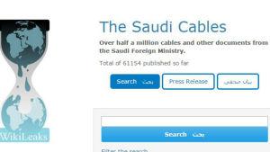 Detalj från Wikileaks webbsida