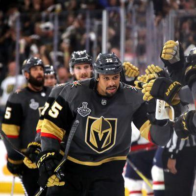 Ryan Reaves Vegas Golden Knights juhlii