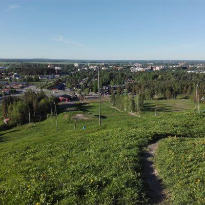 Seinäjoen Jouppilanvuorella juostaan toistaiseksi polkuja pitkin.