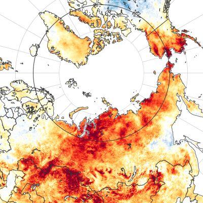 Karta över värmebölja i Sibirien 19-20.6.2020