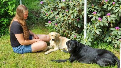 Serafina jansson sitter på gräsmattan tillsammans med sina hundar.