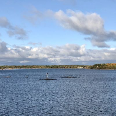 Vy över Jurmo by (Åland)  på avstånd