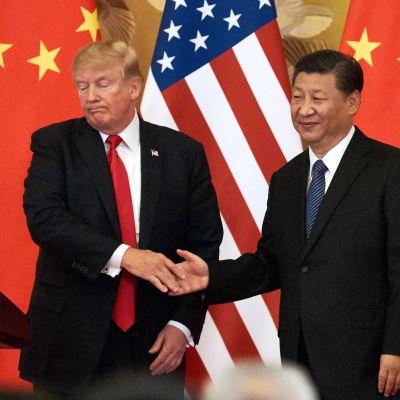 Donald Trump ja Kiinan presidentti  Xi Jinping Pekingissä marraskuussa 2017.