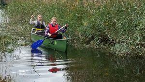 Två flickor paddlar en kanot genom en passage i vassen.