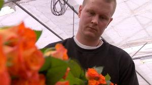 Martti Marttila lajittelee kotitilansa ruusuja.
