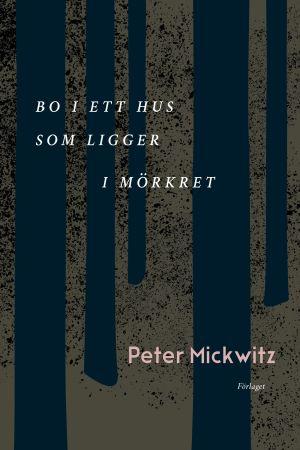 "Pärmbilden på ""Bo i ett hus som ligger i mörkret"" av Peter Mickwitz."