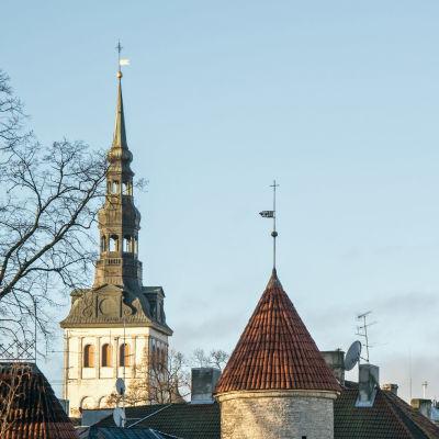 Gamla staden i Tallinn. Viru-porten och Nikolaikyrkan.
