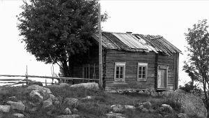 En gammal bondgård på ett foto från 1900-talets början