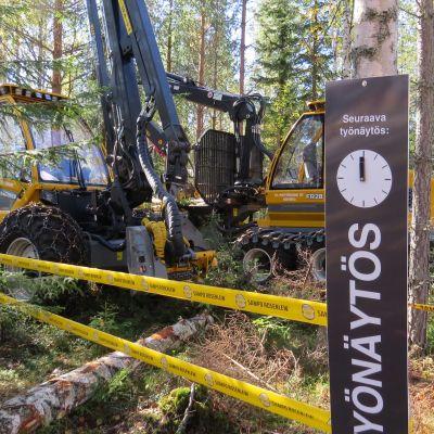 Työnäytöstä odottavia metsäkoneita metsässä.