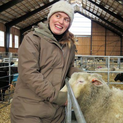Siri Taalas lampolassa karitsojen kanssa