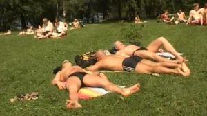 Ihmiset ottavat aurinkoa puistossa 2010.