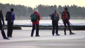 Ett gäng åkare ute på isen den 27 december 2014