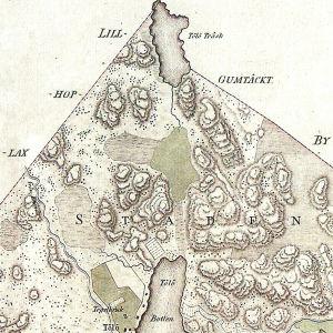 En del av Helsingfors stads detaljplan från 1915. Det har runnit en å mellan Tölöviken längst nere och numera uttorkade Tölö träsk högst uppe.