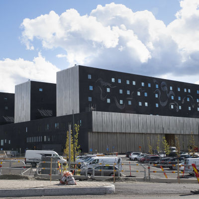 Tiina Pyykkisen taideteos Keski-Suomen keskussairaala Novan seinällä.