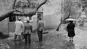 Pihlajatien Sauna Oy, Pihlajatie 22. 1981