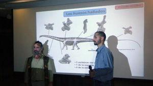 Ett dinosauriefynd har gjorts i Argentina