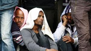 Ulkolinja, Vapauden hinta, Eritrea, pakolainen, yle tv1