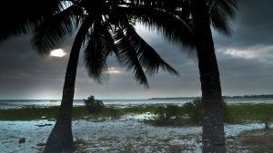 Avara luonto: Saaret meren sylissä, yle tv1
