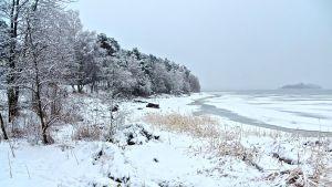Sandviken i Vasa