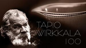 Tapio Wirkkala -juhlavuoden tunnuskuva
