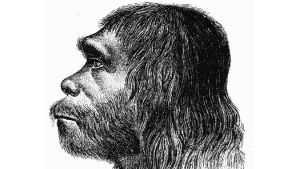 First reconstruction of Neanderthal man 1888