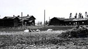 Svartvit bondgård.