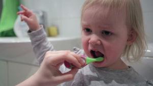 Lapsen hampaita pestään.
