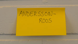 Dubbelnamnet Andersson-Roos.