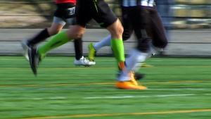 jalkapalloa pelataan kentällä
