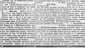 Den 24 oktober 1878 berättade Hufvudstadsbladet att ett hundratal kvinnor hade samlats vid Nya teatern för att fira Rosina Heikel.