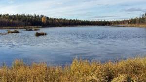 Ylä-Lumijärvi är en av de förorenade sjöarna nära Talvivaaragruvan.