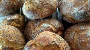 Flera brödlimpor på ett galler.