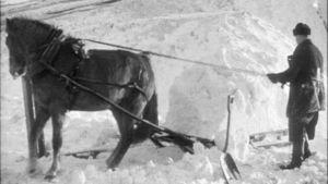 Snöarbete med häst, 1946